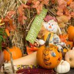 November 2013 Autumn (Fall)  decoration
