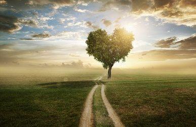 Healing the Heart of You