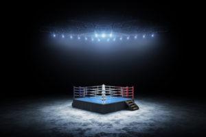 November 2020 The Boxer by Paul Hudon